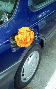 Biodiesel Flower