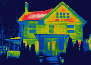 Thermal House Image - Tyrone Turner