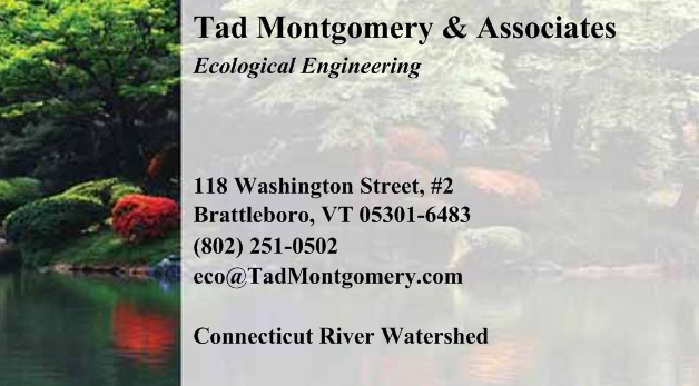 Tad Montgomery & Associates Business Card